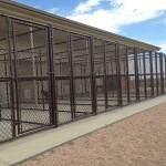 Kennel fencing by Lovewell Fencing